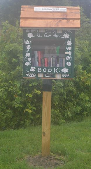 LIBRARY IN THE  RAW  was installed  directly in front of the Princeton Pollinator Garden, and is dedicated and built by Home Depot to Tony Cosimi past employee.